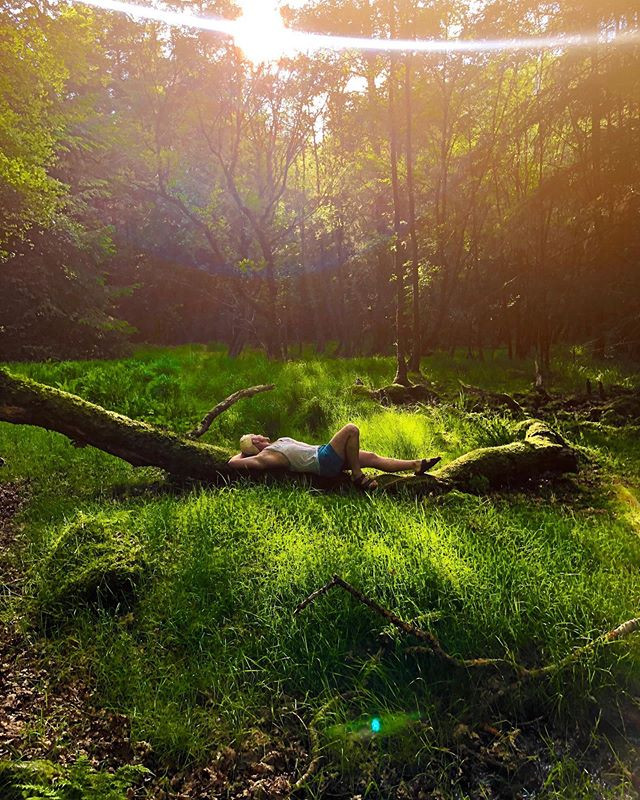 Fairytale bliss ✨ • Ireland was so magic