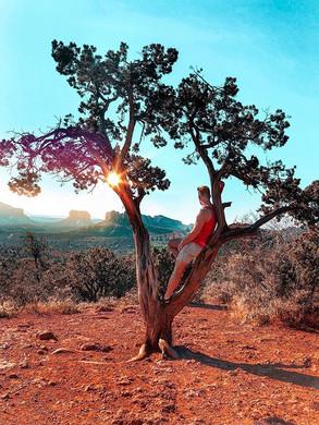 Summer nights in Arizona 🌙 🌚 🌝.jpg