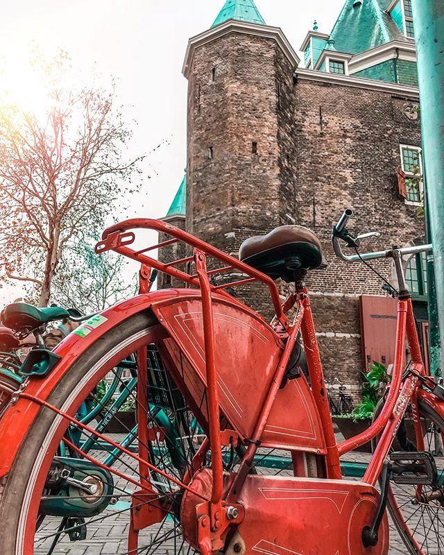 In the city of bikes 🚲.jpg