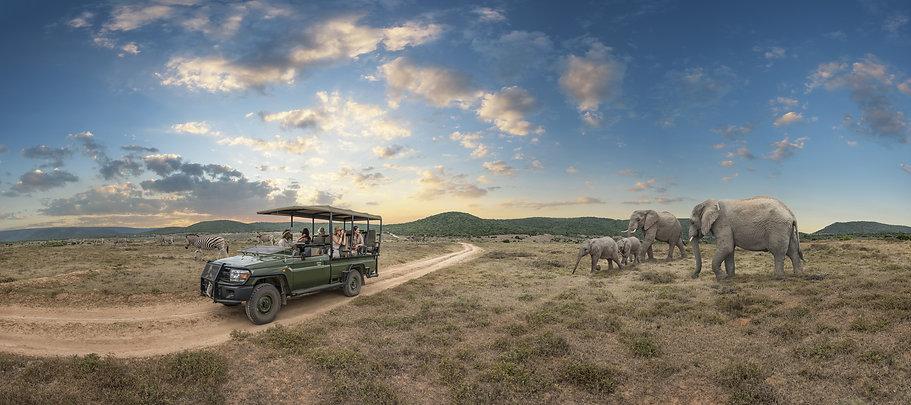Africa-Banner.jpg