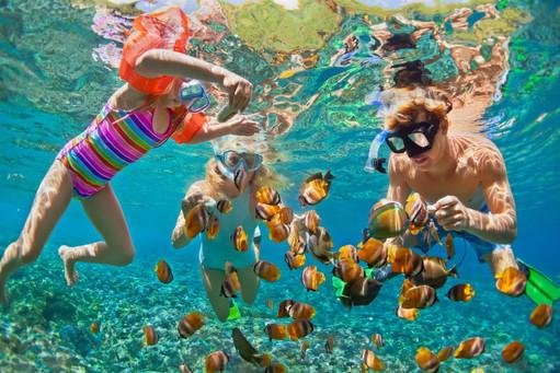 snorkeling-thinkstockphotos-831459576jp