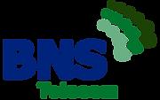 logo_bns_telecom.png
