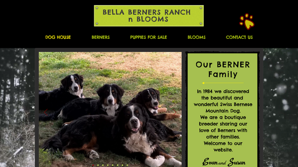 Bella Berners Ranch & Blooms