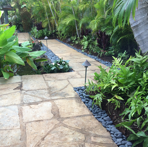 Coral Pavers