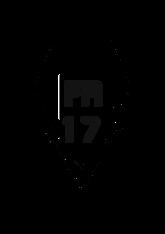Frontier 17