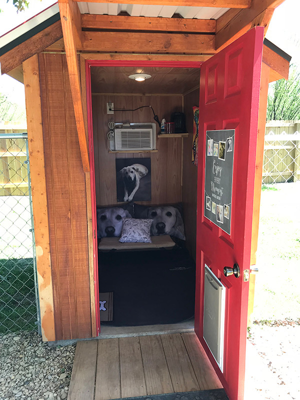 Your dog's home away from home