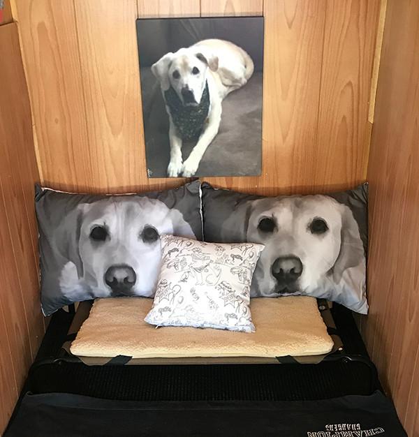 Individual dog bed