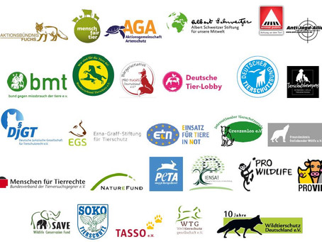 Bundesjagdgesetz: Breites Tierschutzbündnis lehnt Entwurf ab