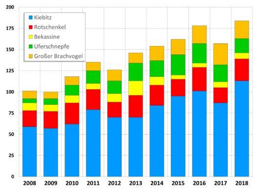 Bestandsentwicklung von Wiesenbrütern im Niedervieland