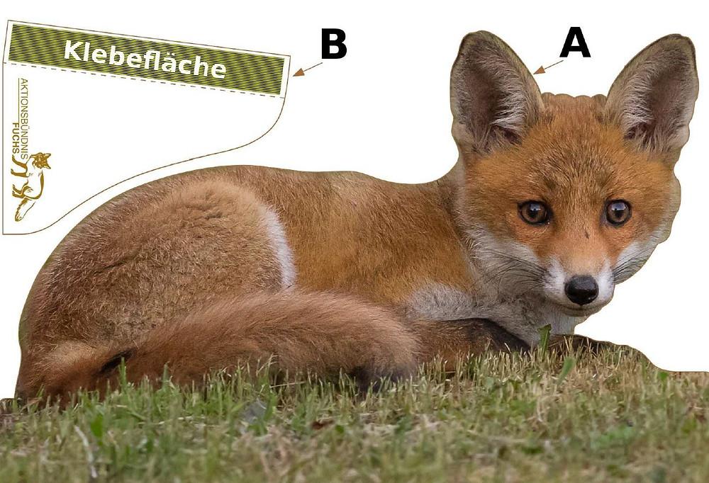 Bastelvorlage für den kleinen Fuchs