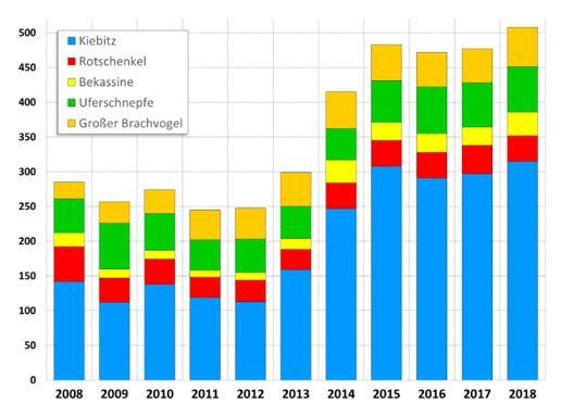 Bestandsentwicklung von Wiesenbrütern im Bremer Blockland