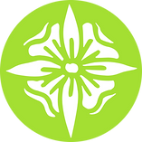 Whau Flower Defined PNG.png