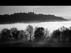 Fog in the Valley (Com)