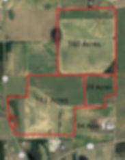 land option II.jpg