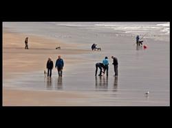 A Day on the Beach (Com)