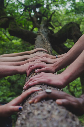 several hands on a log