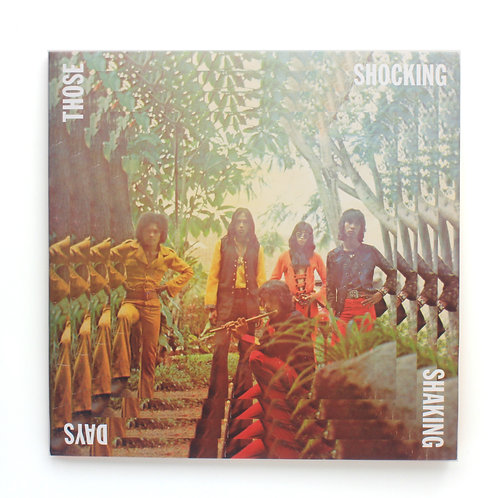 Those Shocking Days | VA Indonesian Psych Comp | Used LP