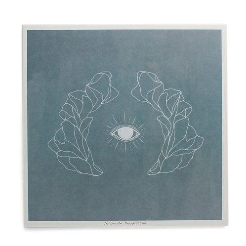 José González ‎| Vestiges & Claws | Used Lp