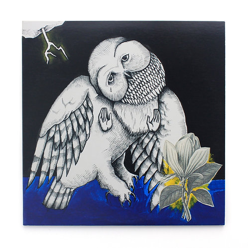 Songs: Ohia ‎| The Magnolia Electric Co | 2016 Deluxe | Used Lp
