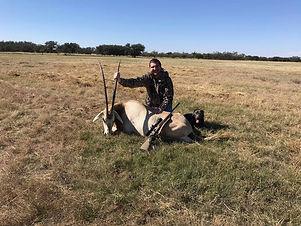 scimitar horned oryx.jpg