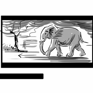 Storyboard pro film The Zookeeper's Wife