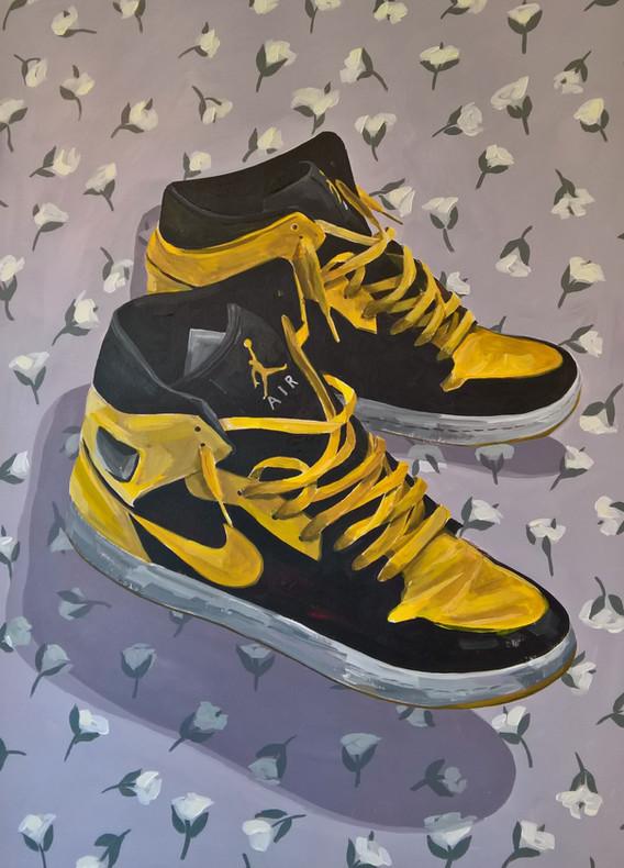 Domesticated Jordans