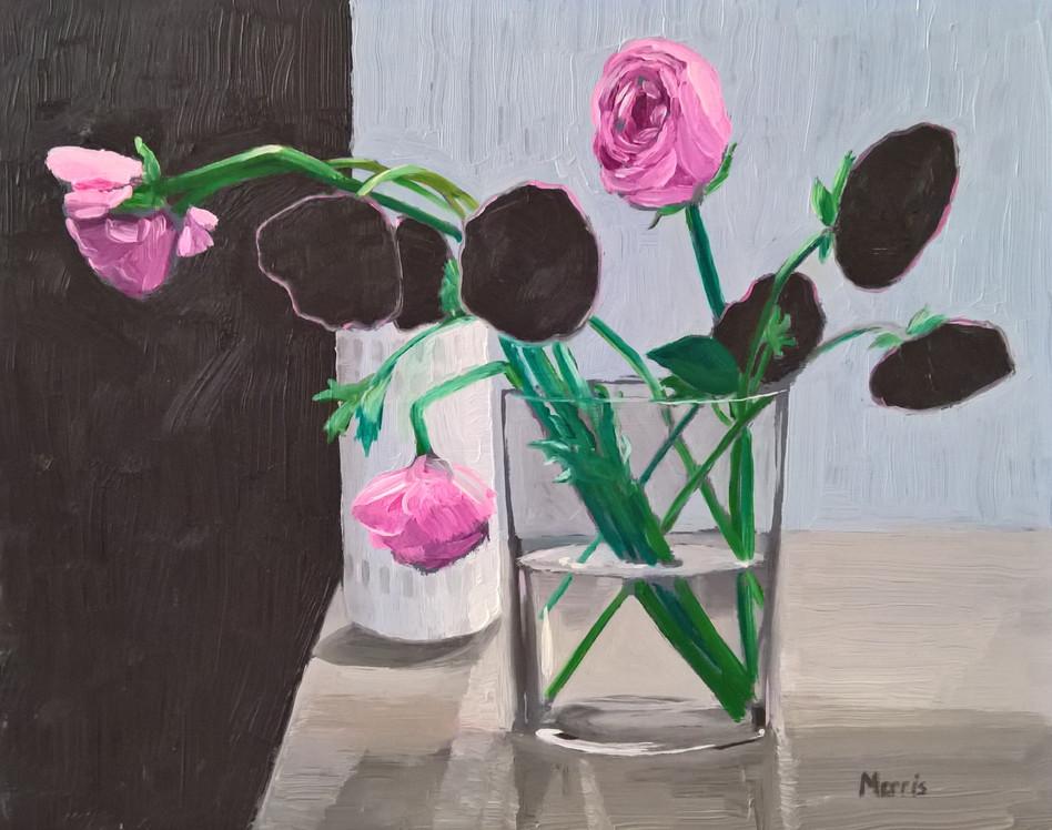 Ranunculus, oil on panel, 8 x 10