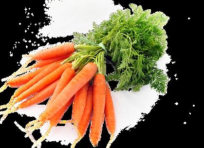 Carrot-PNG-Image-Transparent.png