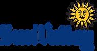 sv-logo-blue_1497541560254 (1).png