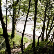 Woodland walk to beach