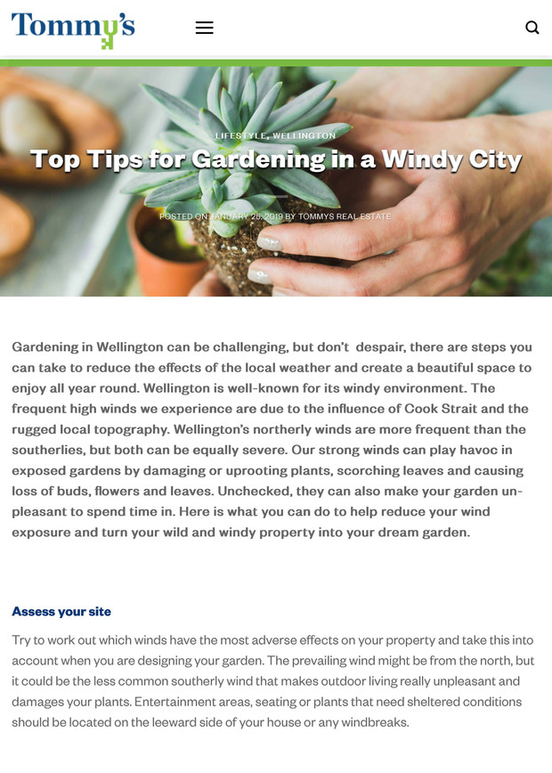 Top tips for gardening in a windy city