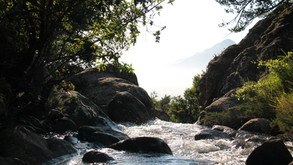 Saving America's rivers