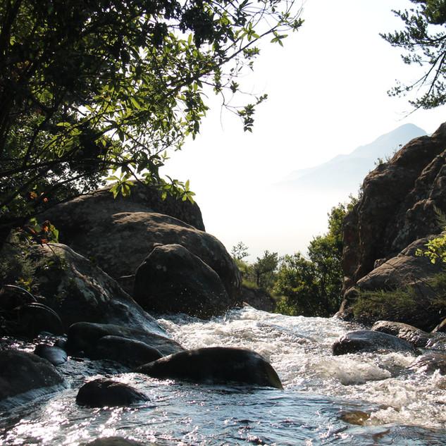 Riverkeeper – Board of Directors
