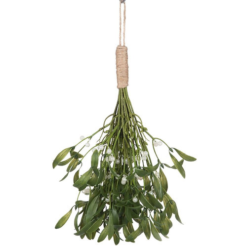 Planta verde com corda, com 35 cm de altura