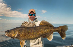 Gold and Flat #walleyefishing _ #walleye