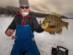 Big bluegills will outsmart a human almo