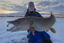 Pike that reside in 90 feet of water and