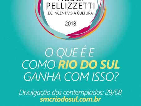 Prêmio Nodgi Pelizzetti: o que é e como Rio do Sul ganha com isso?