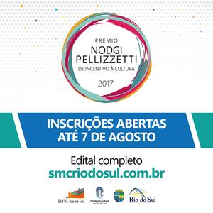 Artistas, produtores e agentes culturais de Rio do Sul têm até 7 de agosto para enviarem projetos