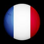iconfinder_Flag_of_France_96147.png