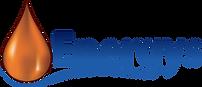 Logo Energys solo.png
