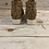 Thumbnail: Spotted leopard Platforms