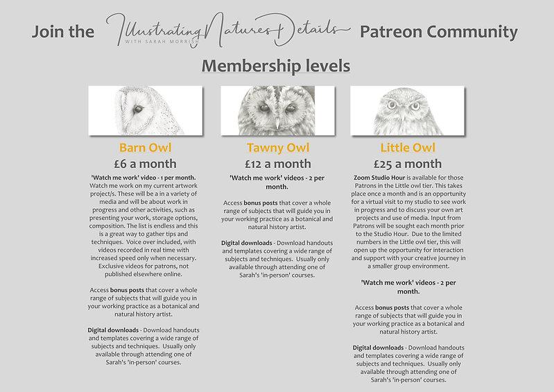 Revised membership levels March 2021.jpg