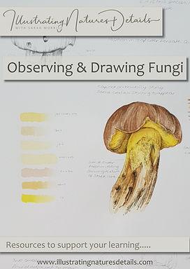 fungi jpeg.jpg