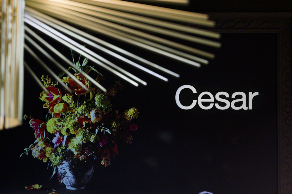 stand Cesar_4507.jpg