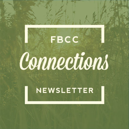 Connections-Newsletter-graphic-for-websi