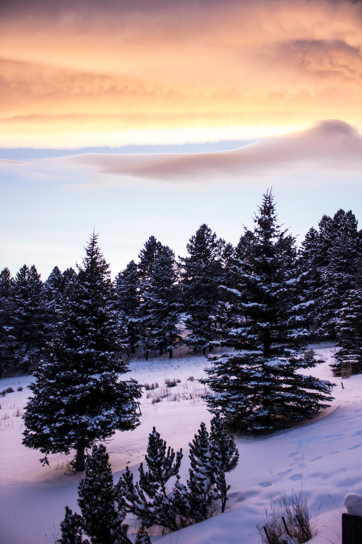 montana sky 2.jpg