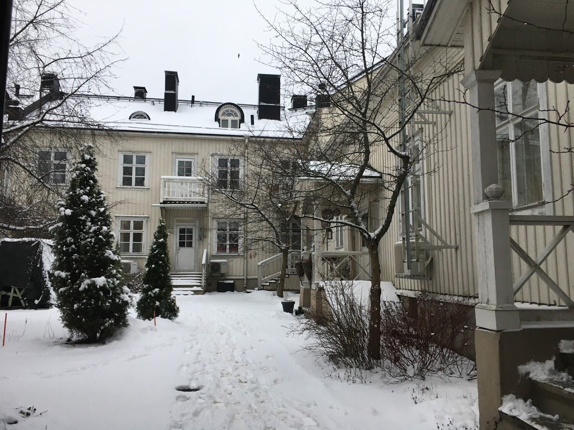 Back Yard at Pirkankatu 24