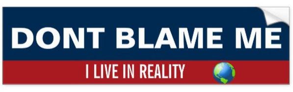 Don't Blame Me.jpg