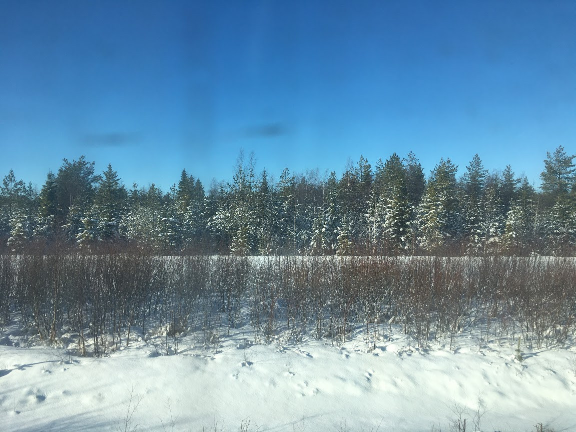 Train to Rovaniemi